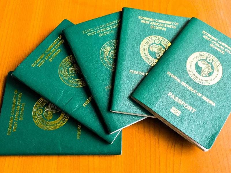 Nigeria international-passport
